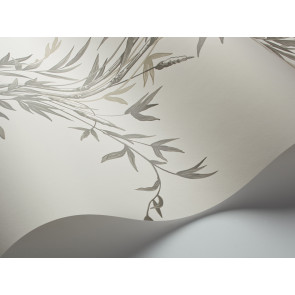 Cole & Son - Archive Anthology - Bamboo 100/5025