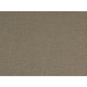 Dominique Kieffer - Grande Largeur - Taupe 17162-001