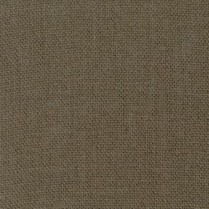 Dominique Kieffer - Gros Lin - Bois 17208-009