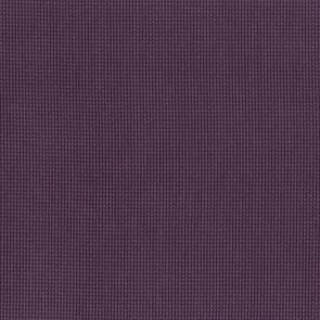 Dominique Kieffer - Grillage - Amethyst 17226-019