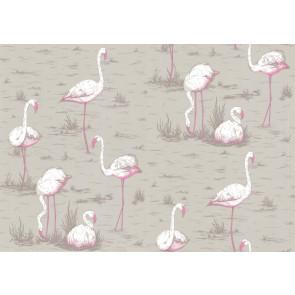 Cole & Son - New Contemporary I - Flamingos 66/6042