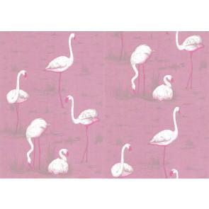 Cole & Son - New Contemporary I - Flamingos 66/6043