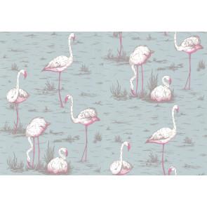 Cole & Son - New Contemporary I - Flamingos 66/6044