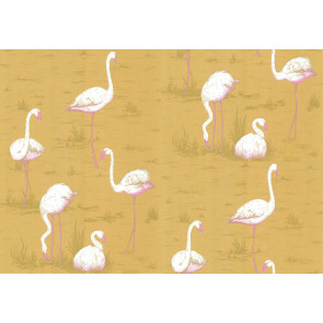 Cole & Son - New Contemporary I - Flamingos 66/6045