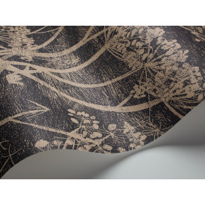 Cole & Son - New Contemporary I - Cow Parsley 66/7048