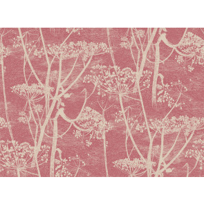 Cole & Son - New Contemporary I - Cow Parsley 66/7052