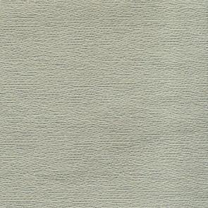 Rubelli - Beneto - Argento 8003-007