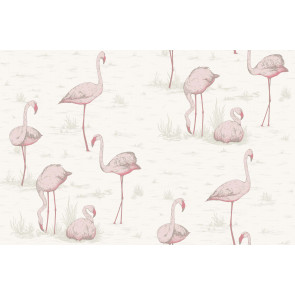 Cole & Son - Contemporary Restyled - Flamingos 95/8045