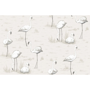 Cole & Son - Contemporary Restyled - Flamingos 95/8046