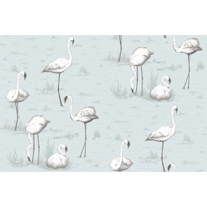 Cole & Son - Contemporary Restyled - Flamingos 95/8047