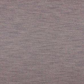Camengo - Aubagne - 34230916 Violet