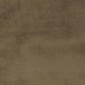 Camengo - Erato - 35530100 Chataigne
