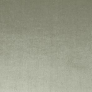 Camengo - Erato - 35530610 Argile