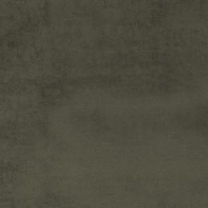 Camengo - Erato - 35530814 Charbon