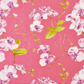 Camengo - Martigues - 7510221 Fond Rose