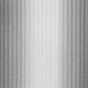 Designers Guild - Forster - Charcoal - F1719-02