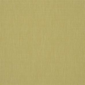 Designers Guild - Barra - Reed - F1990-02