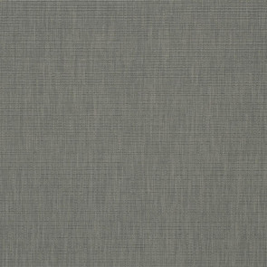 Designers Guild - Barra - Ash - F1990-05