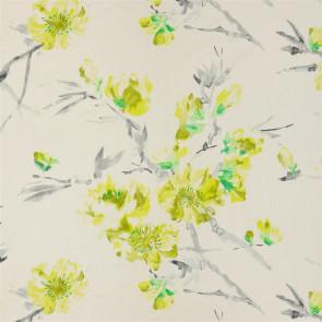 Designers Guild - Oriental Flower - Acacia - FDG2292-01