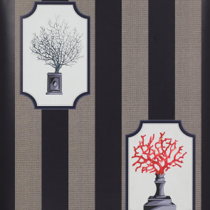 Manuel Canovas - Vol 5 - Aristote Corail 3073/01