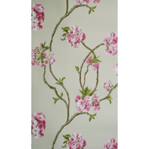 Nina Campbell - Sylvana - Orchard Blossom NCW4027-01