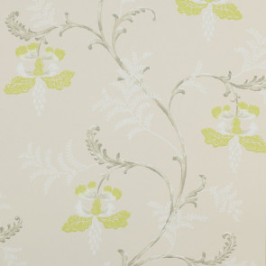 Colefax and Fowler - Messina - Bellflower 7127/02 Lime