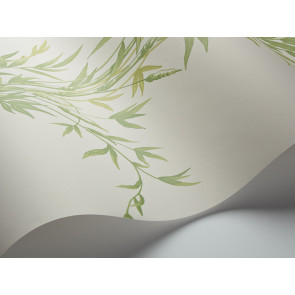 Cole & Son - Archive Anthology - Bamboo 100/5023