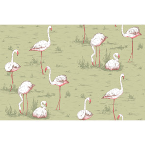 Cole & Son - Icons - Flamingos 112/11038