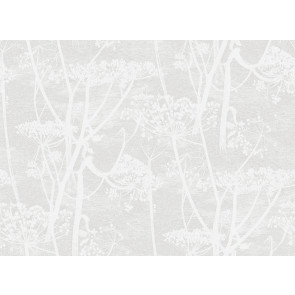Cole & Son - Icons - Cow Parsley 112/8027