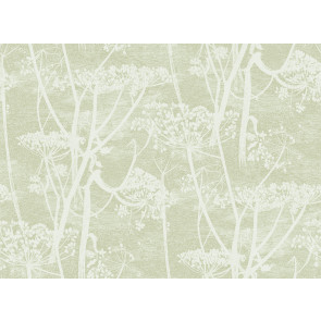 Cole & Son - Icons - Cow Parsley 112/8029