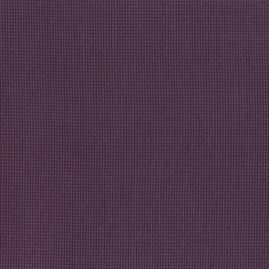 Dominique Kieffer - Grillage - Amethyst 17226-019