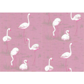 Cole & Son - New Contemporary I - Flamingos 66/6043