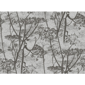 Cole & Son - Contemporary Restyled - Cow Parsley 95/9050