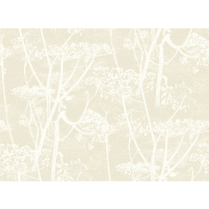 Cole & Son - Contemporary Restyled - Cow Parsley 95/9051