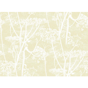 Cole & Son - Contemporary Restyled - Cow Parsley 95/9053