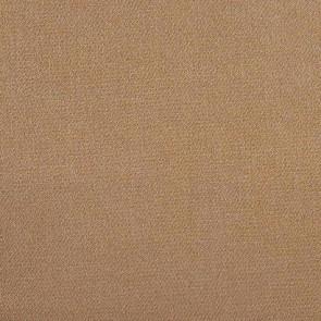 Camengo - Initiale - 31180202 Camel Clair
