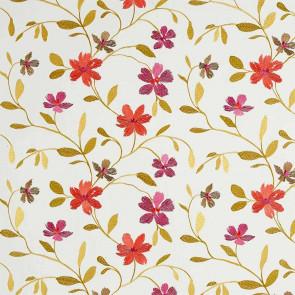 Camengo - Flowering - 33160337 Corail