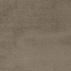 Camengo - Erato - 35530202 Bis