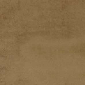 Camengo - Erato - 35531222 Fauve
