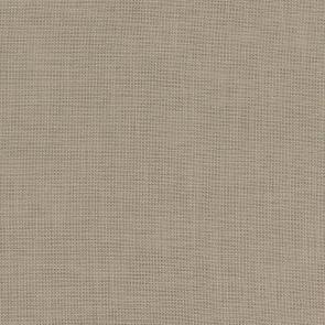 Camengo - Almora Plain - 36640934 Grege