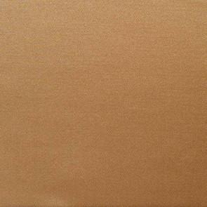Camengo - Galerie D'Art - 6331354 Camel