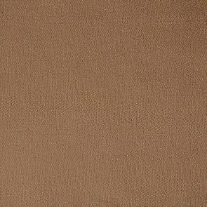 Camengo - 1er Acte - 8341251 Bison