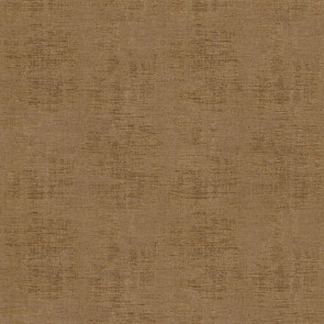 Casamance - Mansour - Johara - 74390778 Camel
