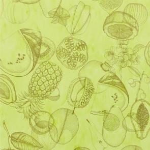 Christian Lacroix - Agua Parati - PCL663/05 Lime