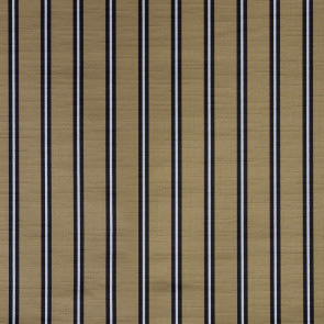 Dedar - SN Regimen - D18005-017 Gold Turtle