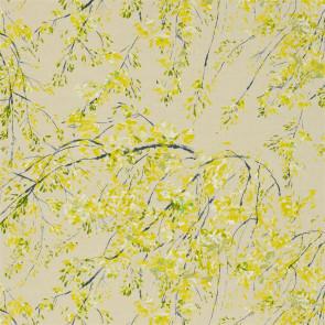 Designers Guild - Plum Blossom - Acacia - FDG2293-01