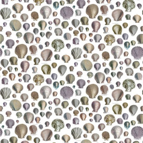 Designers Guild - Captain Thomas Browns Shells - FJD6003/02 Oyster