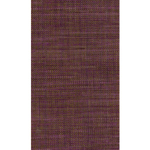 Osborne & Little - Papilio Plain 2 F5760-01