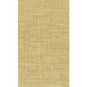 Osborne & Little - Papilio Plain 2 F5760-08