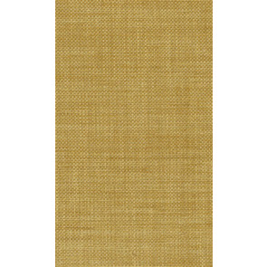 Osborne & Little - Papilio Plain 2 F5760-09